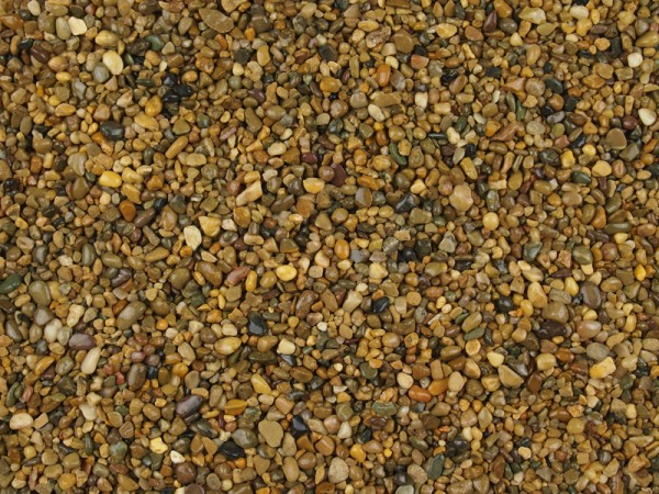 brittany-bronze-2-5mm-dried-w04 (2)