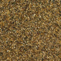 daltex-golden-pea-1-3mm-dried-w04 (2)